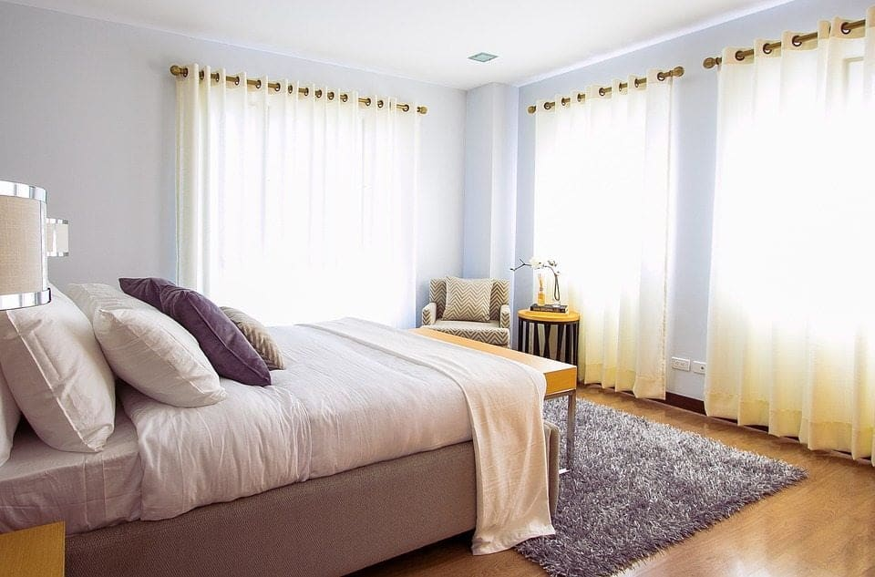 how to handle bed bugs